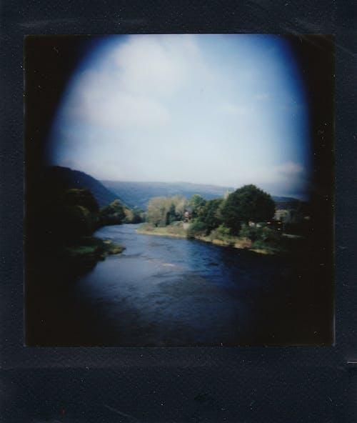 光, 光線, 反射, 夏天 的 免费素材图片