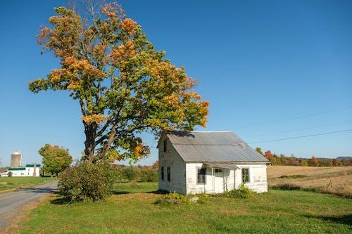 Free stock photo of abandoned, abandoned house, autumn