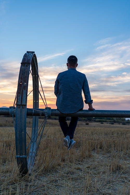 Immagine gratuita di 1 uomo, adulto, agricoltura