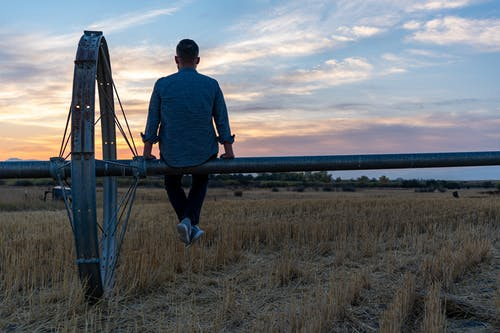 Immagine gratuita di 1 uomo, agricoltura, azienda agricola