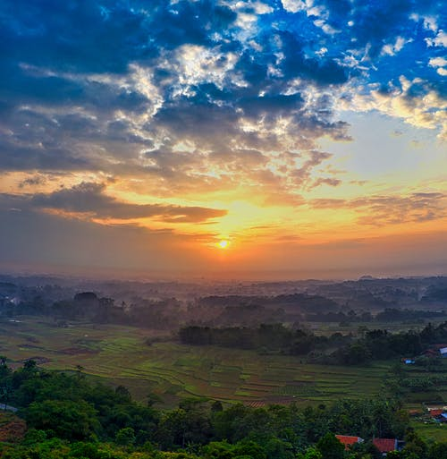 Breathtaking landscape of plantations on field near trees and plants near buildings in summer day under cloudy sky in nature at sunset