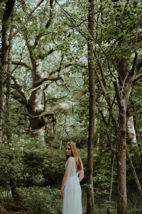 Δωρεάν στοκ φωτογραφιών με αγάπη, γαμήλια τελετή, γυναίκα, δέντρο