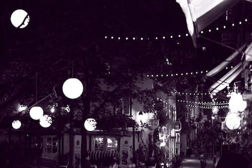 Free stock photo of at night, dark, dark background