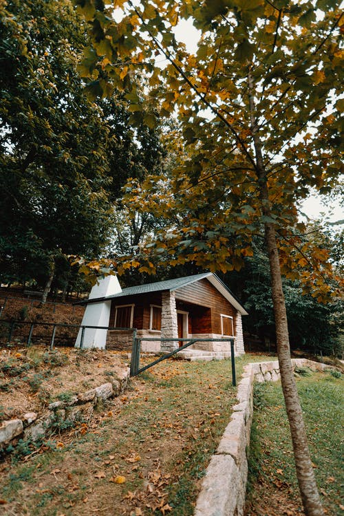 Small cottage surrounded by grass and trees in forest