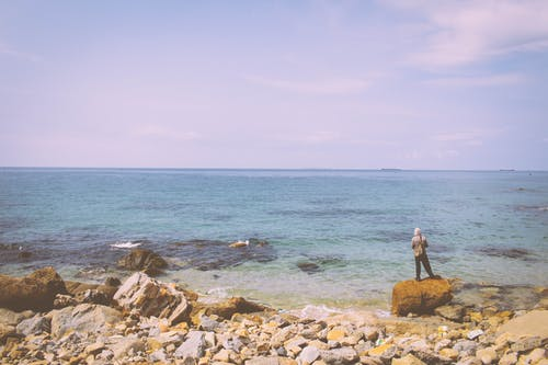 Δωρεάν στοκ φωτογραφιών με άνδρας, αρσενικός, θάλασσα, πιπέρι