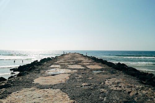 人, 假期, 地平線 的 免费素材图片