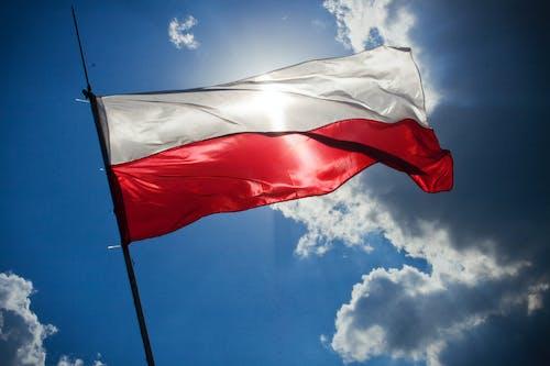 Gratis stockfoto met boenen, Polen