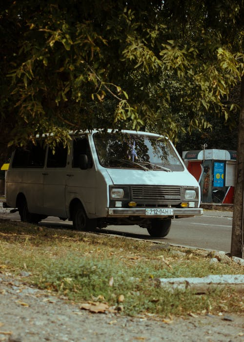 White Van Parked Beside Green Tree
