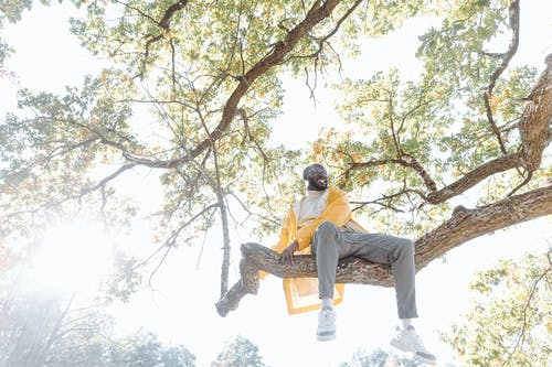 Man in Yellow Jacket Sitting On A  Branch Of  A Tree