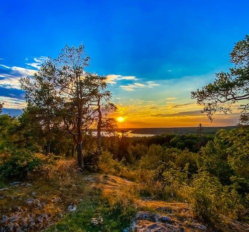 Free stock photo of beatiful landscape, stockholm, sweden
