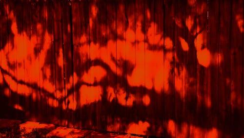 怪異, 牆壁, 紅色, 萬聖節 的 免費圖庫相片