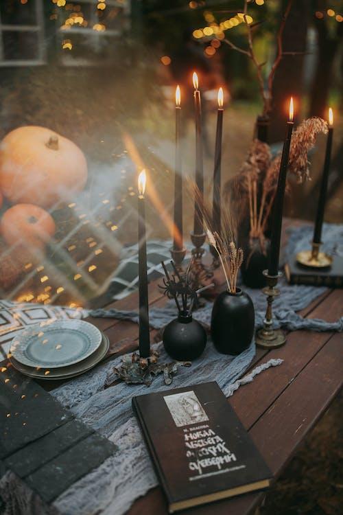 Photos gratuites de apeuré, atmosfera de outono, automne