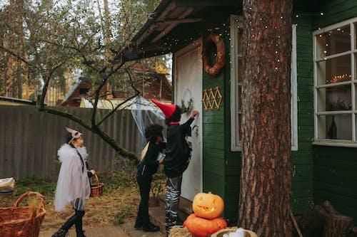 Photos gratuites de adulte, aliments, apeuré, atmosfera de outono