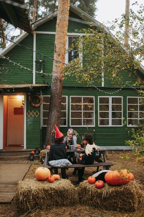 Photos gratuites de apeuré, arbre, architecture, atmosfera de outono
