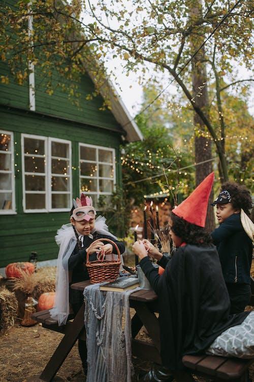 Photos gratuites de administration, adulte, apeuré, atmosfera de outono