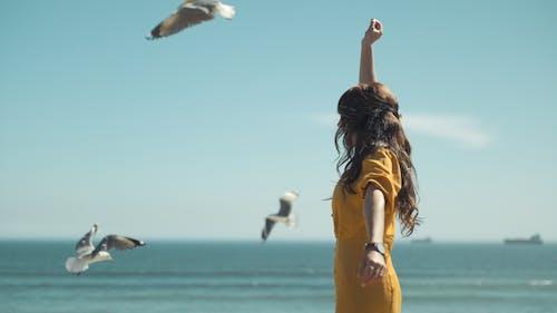 boş zaman, deniz, deniz kıyısı, eğlence içeren Ücretsiz stok fotoğraf