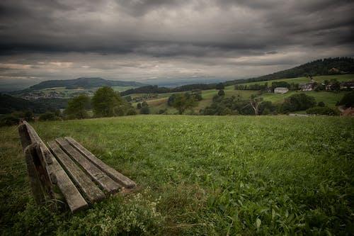 Foto profissional grátis de área, árvores, assento, Banco