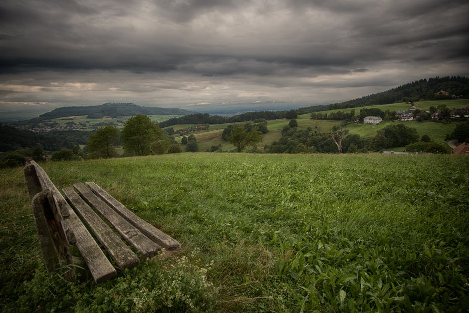 New free stock photo of bench, nature, sky