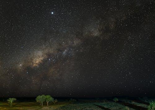 アフリカ, オリオン, ケニアの無料の写真素材