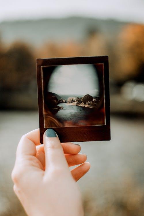 lomography的, 即时照片, 原本, 可攜式 的 免费素材图片