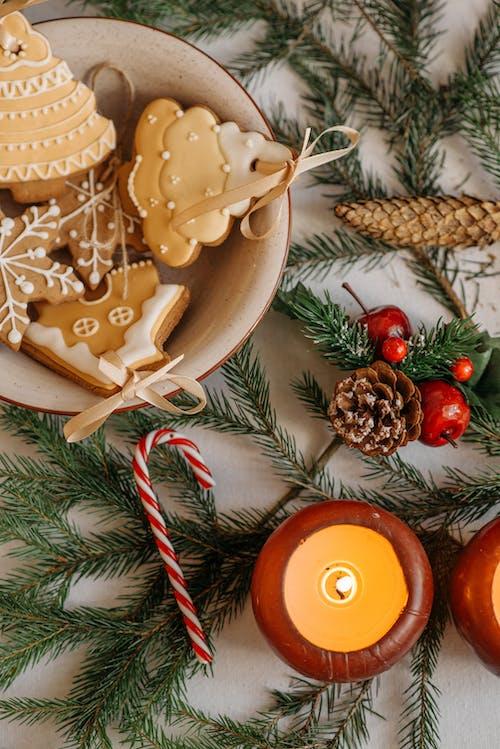 人造雪, 來臨, 假日季节 的 免费素材图片