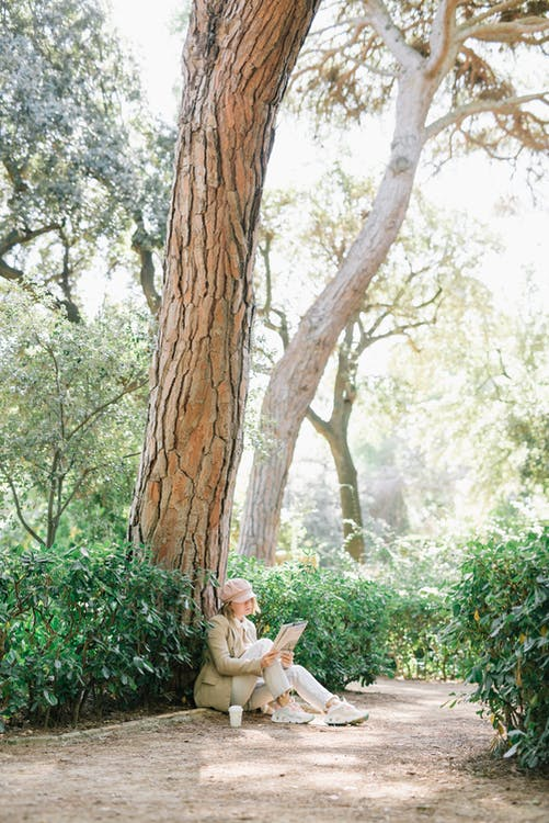 Photo of Woman Sitting Under a Tree on a Sunny Day