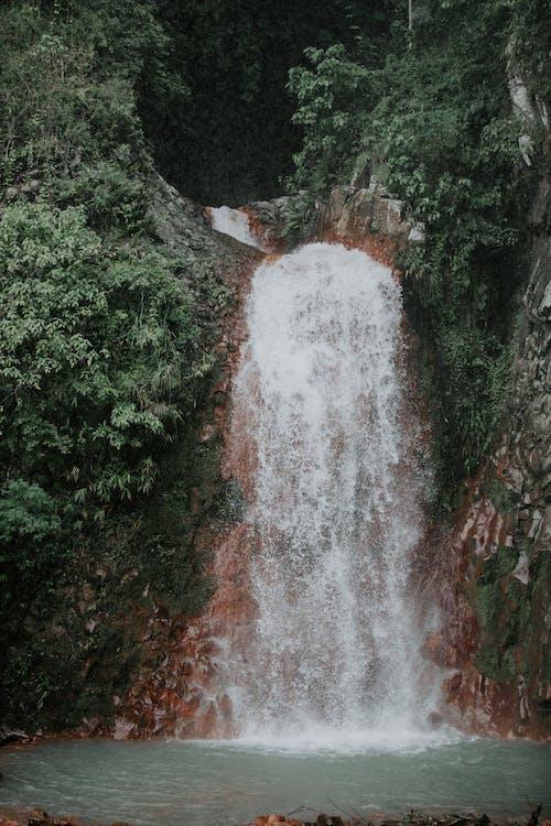 Rapid foamy waterfall near pond in green mountains