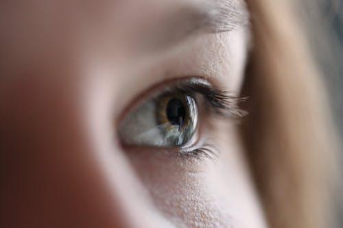 Eye of crop serene woman in sunlight