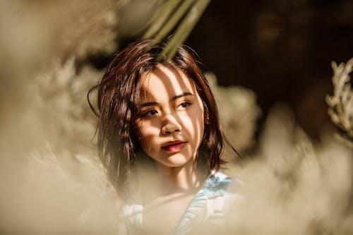 Darmowe zdjęcie z galerii z azjatka, cień, czerwone usta, dama