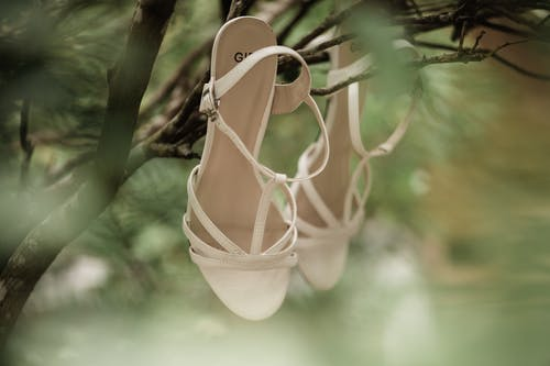 Stylish female sandals hanging on tree branch in garden