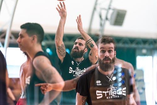 Free stock photo of basketball