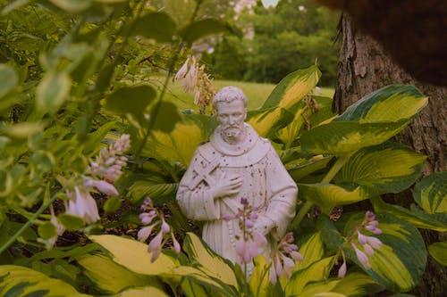 Fotos de stock gratuitas de catolicismo, católico, cristianismo