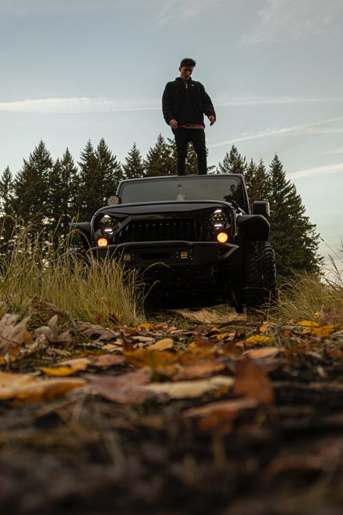 Free stock photo of fall colors, fall leaves, jeep