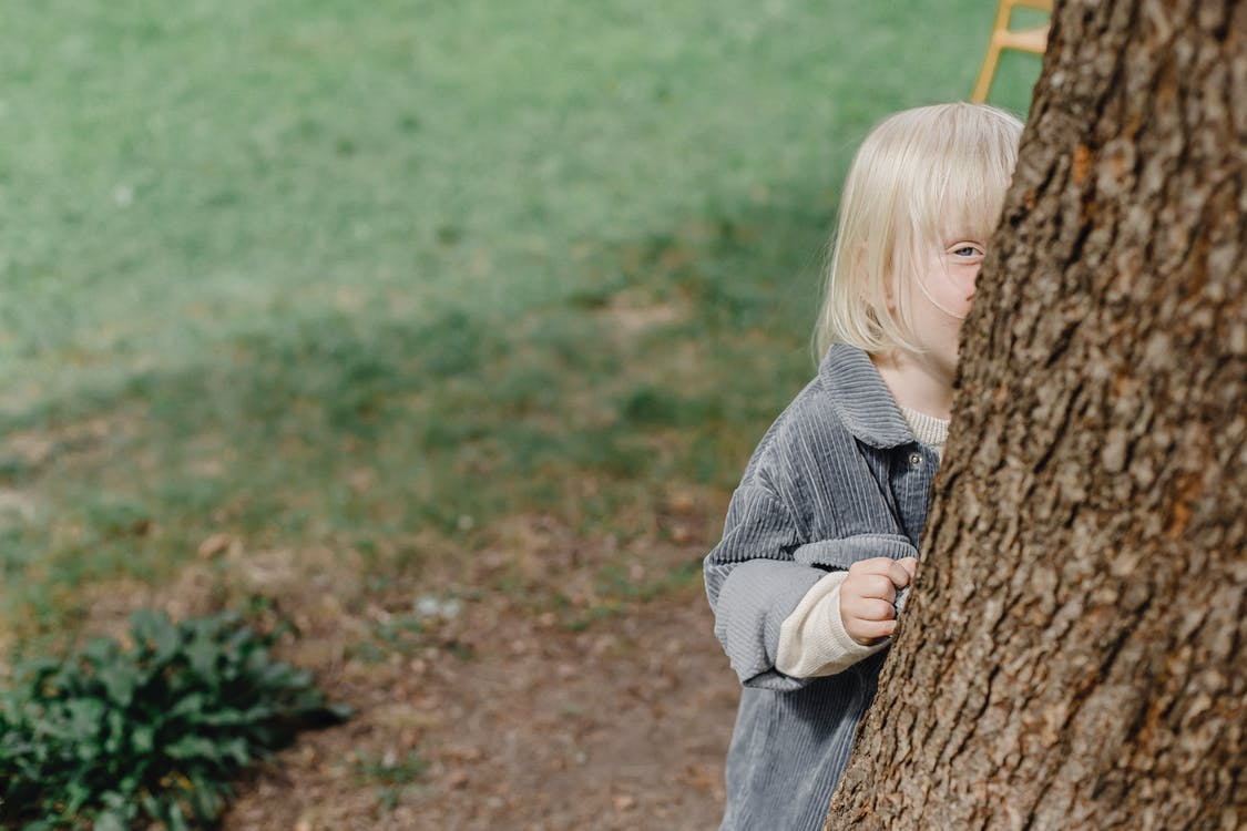 From above of cute kid looking at camera while hiding behind tree trunk in park with grassy lawn on blurred background in street