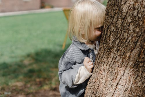 Cute little boy standing behind tree