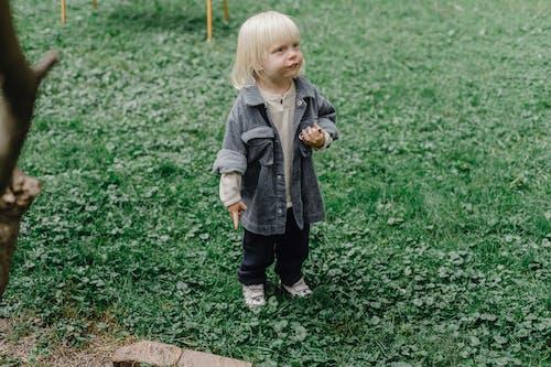 Cute little boy on grassy lawn