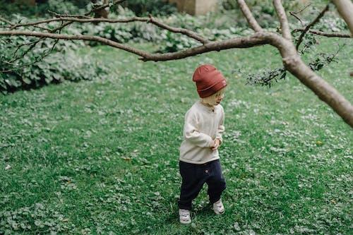 Little boy on grassy lawn