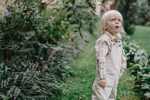Curious little child standing in green garden and looking away