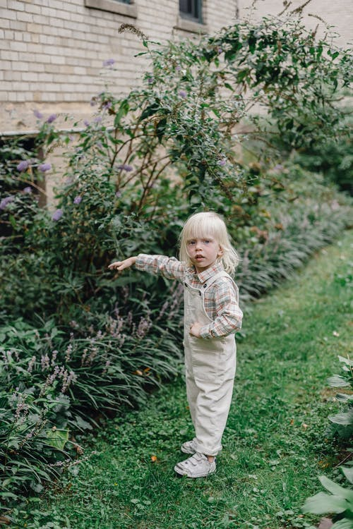 Side view of curious little kid with blond hair in stylish outfit standing on lawn and touching blooming bushes while playing in green garden