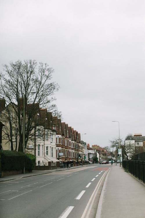 Immagine gratuita di albero, architettura, asfalto, autunno
