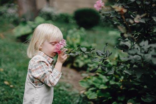 Stylish little child smelling flower in garden