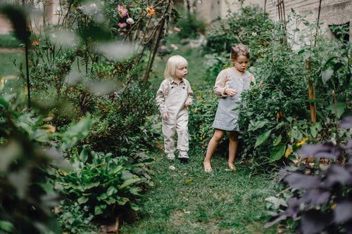 Cute siblings resting in green garden