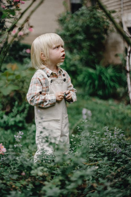 Side view of cute thoughtful little boy with blond hair in stylish clothes standing amidst lush green plants in garden and looking away