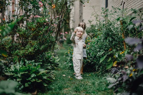 Side view of content adorable little children with blond hair playing together in backyard near lush blooming plants