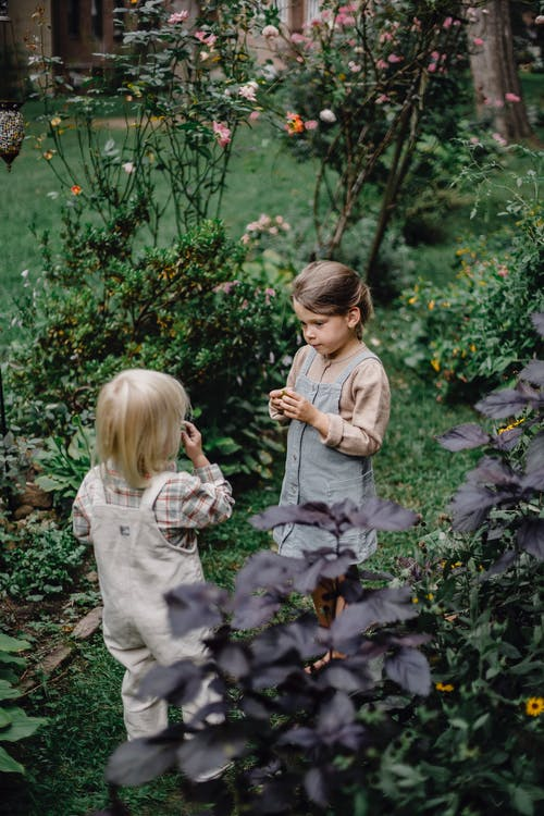 High angle of focused little girl and boy standing in green garden near plants and enjoying smell of picked flowers