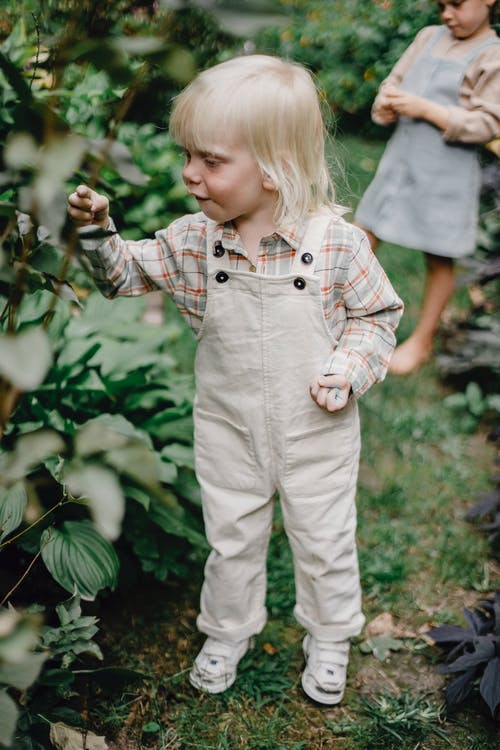 Amazed little boy touching plants while standing in garden with sister