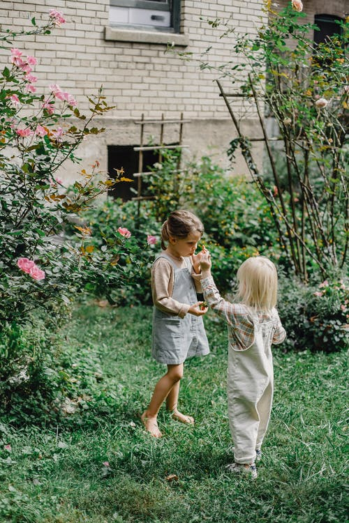 Adorable children eating fruit in green garden