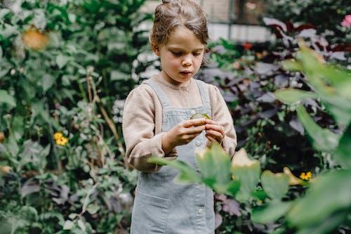 Thoughtful kid exploring fresh fruit in garden