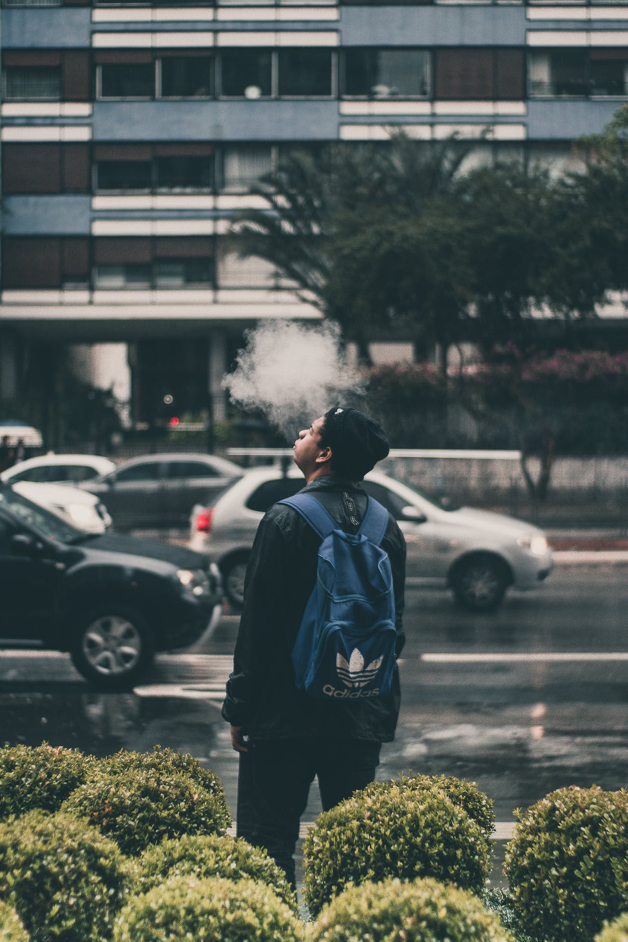 Man Wearing Black Jacket And Blue Adidas Backpack
