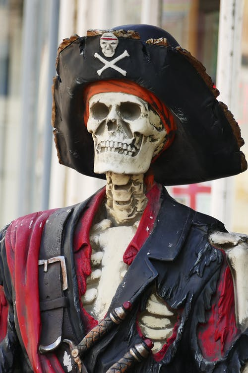 Person Wearing White Skull Mask and Blue Leather Jacket